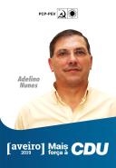 3º - Adelino Nunes, 57 anos, operário metalúrgico. Coordenador da União de Sindicatos de Aveiro. Membro da Comissão executiva da CGTP. Presidente da Assembleia Geral do Site Centro Norte. Membro da Direcção Regional de Aveiro do PCP e do seu executivo.
